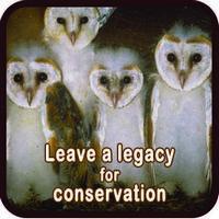 Sidebar 2 Legacy Conservation