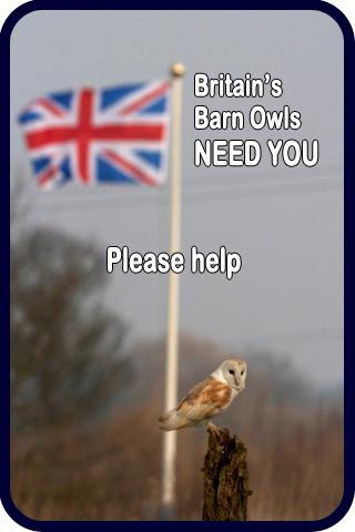 Sidebar 2 Britains BOwls