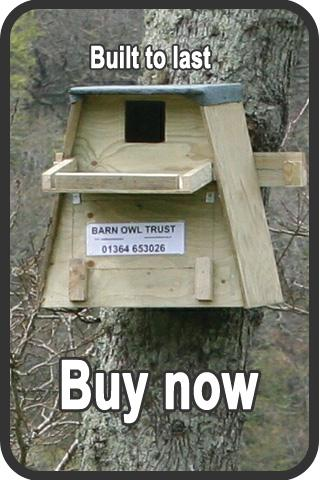 Barn Owl Nestboxes Free Owl Nest Box Plans