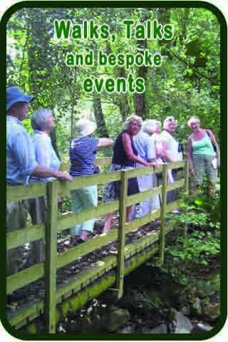 Sidebar 3 Walk Talks