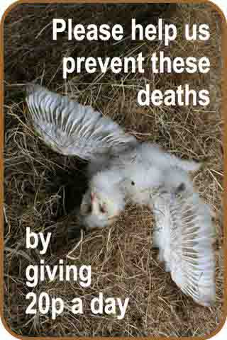 Sidebar 3 Prevent Deaths Give 20p
