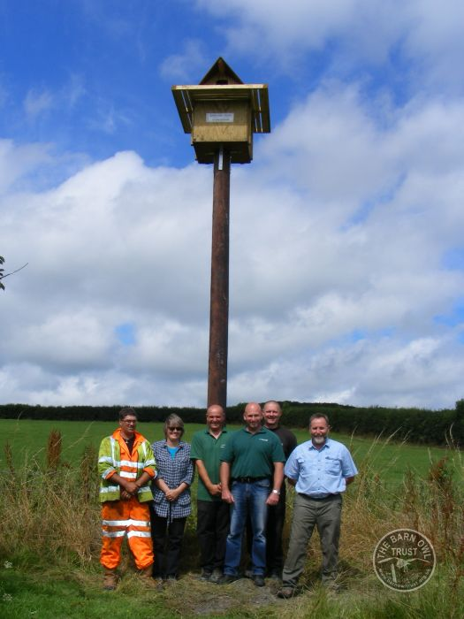 Pole Mounted Nest Box For Barn Owls The Barn Owl Trust