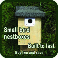 Sidebar 2 Small Bird Box