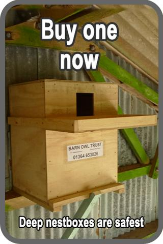 Sidebar 2 Indoor Nestbox