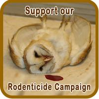 Sidebar 2 Rodenticide Campaign